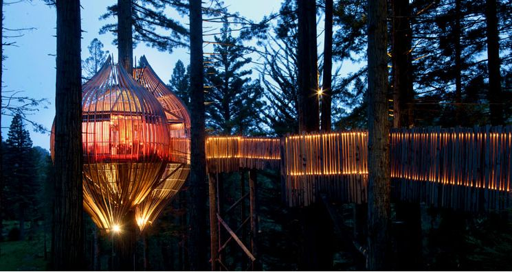 Redwoods-Treehouse-Restaurant-Evening-View