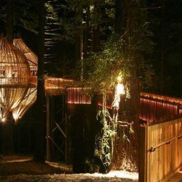 treehouse_restaurant_07