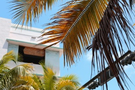 Silke_Klinnert-tropical-deco-17